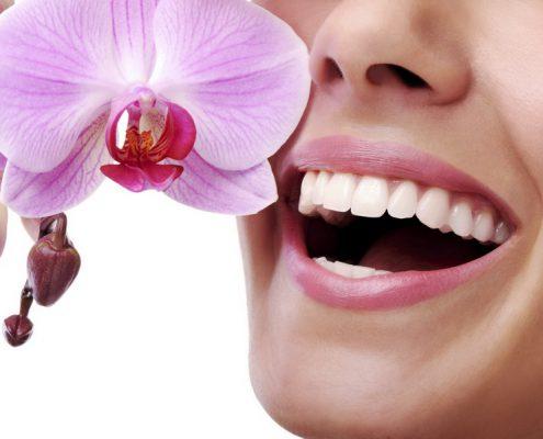 Der schönste Schmuck sind feste Zähne und gesundes Zahnfleisch
